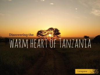 Discovering Warm Heart Tanzania