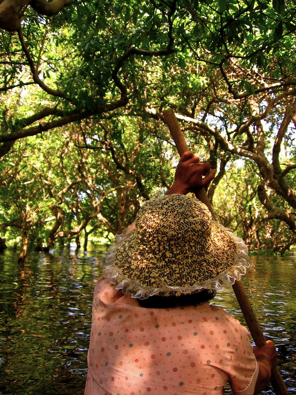 Floating forest of Tonle Sap