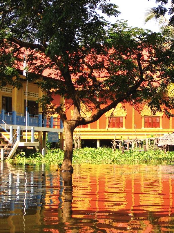 Reflection in Kompong Phluk
