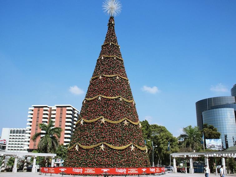 Christmas tree in Guatemala City