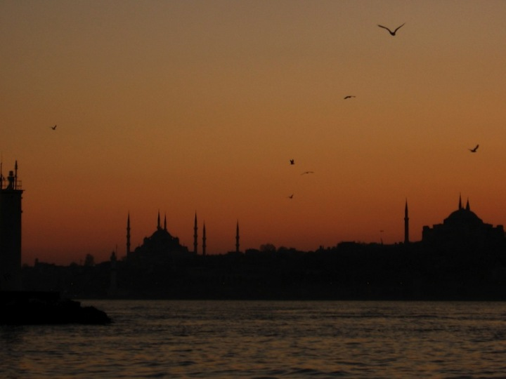Sunset Bosphorus Birds