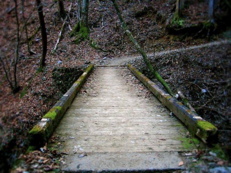 Mitakesan bridge
