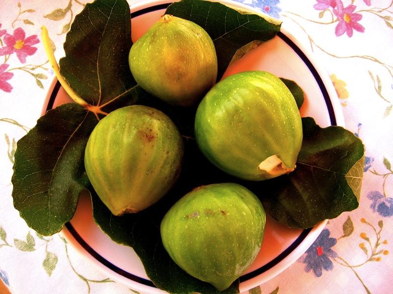 Figs Sardinia Italy