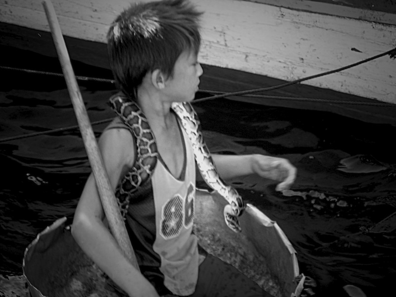 Boy with snake in Tonle Sap