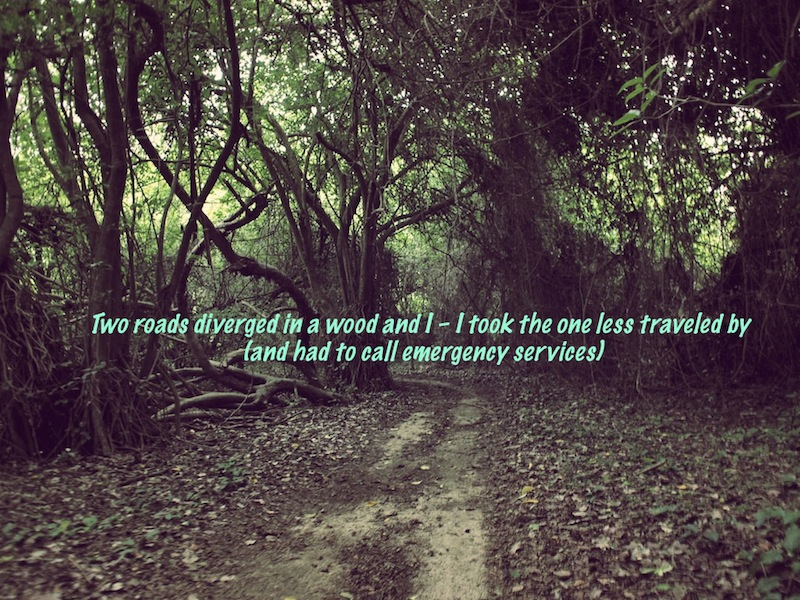 Two roads diverged travel quote