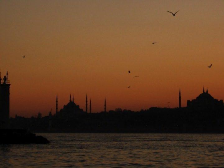 Sunset Bosphorus Birds
