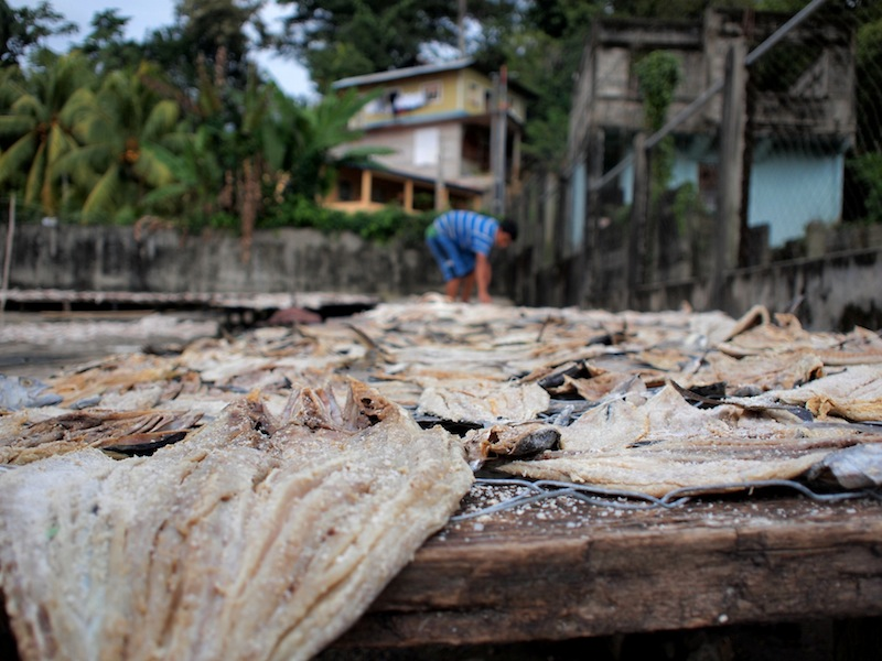 Drying cod Livingston Guatemala