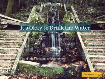 Its Okay to Drink the Water (and other reasons to love home)